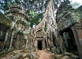 Angkor Discovery (4 days)